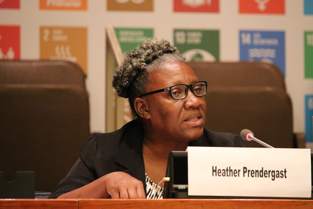 Heather Prendergast of the Statistical Institute of Jamaica represented NSOs on the panel of the UN HLPF Side Event on Monitoring Tenure Security in the SDGs