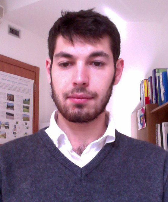 Marcello Demaria, Junior Researcher and Data Analyst