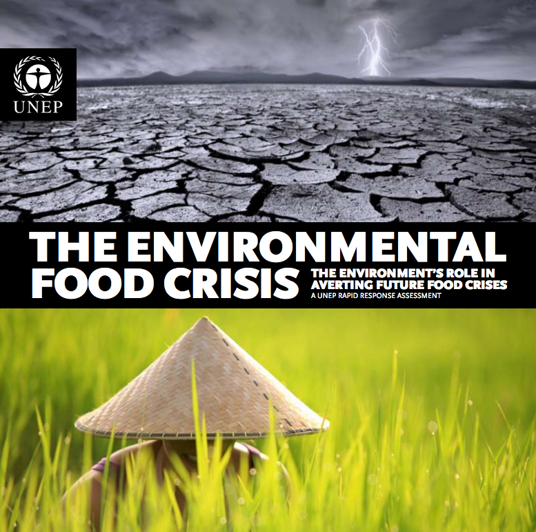 The environmental food crisis: the environment's role in averting future food crises cover image