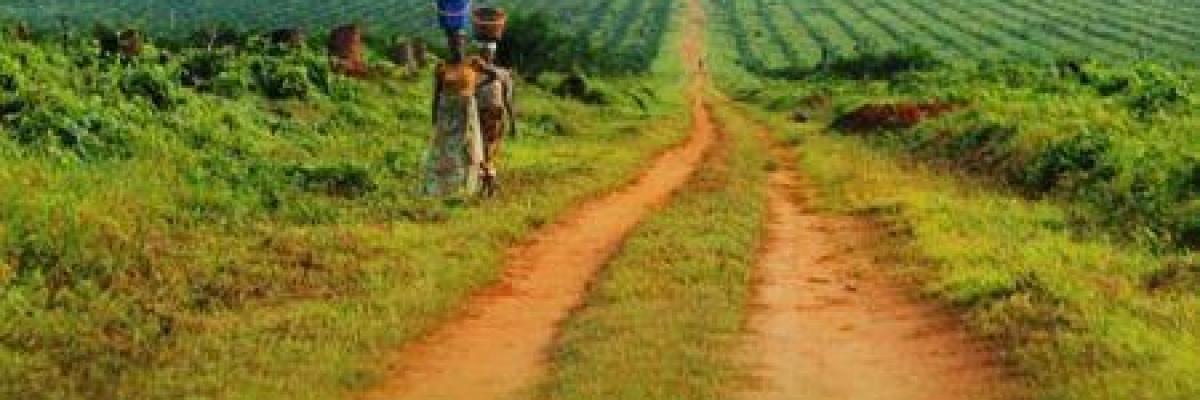 original_0910-50962-rd-congo-kuramo-capital-et-kalaa-mpinga-injectent-17-5-millions-dans-le-capital-de-la-firme-d-agrobusiness-feronia_m.jpg