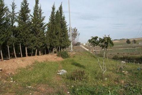 20-000-hectares-de-terres-domaniales-.jpg