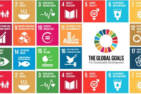 United Nations Sustainable Development Goals (SDGs)