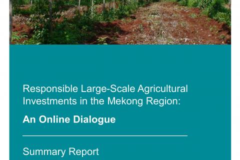 Cover Reponsible Large Scale Land Acquisitions Mekong