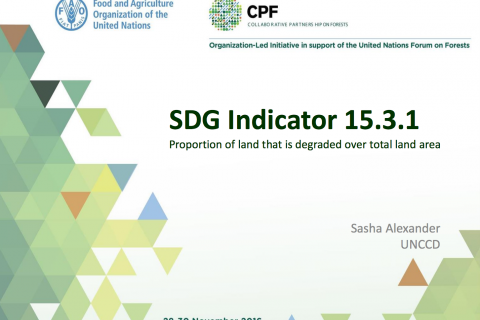 SDG Indicator 15.3.1 - Proportion of land that is degraded over total land area cover image