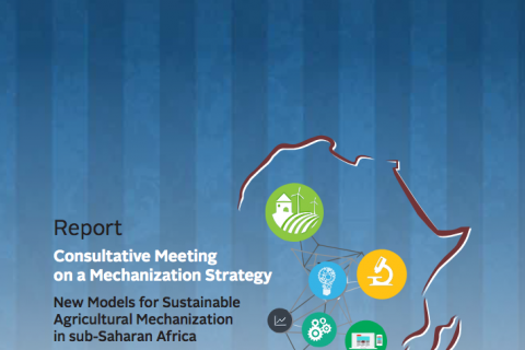 Consultative Meeting on Mechanization Strategy cover image