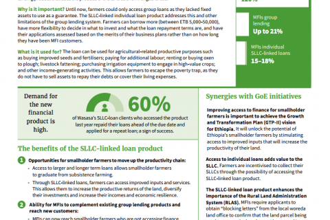 Promoting financial inclusion: Developing an innovative SLLC-linked loan product cover image