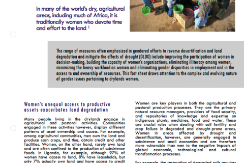Gender and desertification cover image