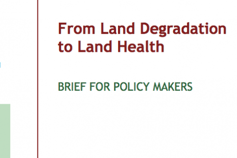 From Land Degradation to Land Health cover image