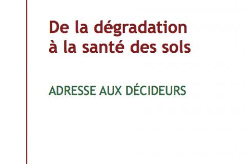 De la dégradation à la santé des sols cover image