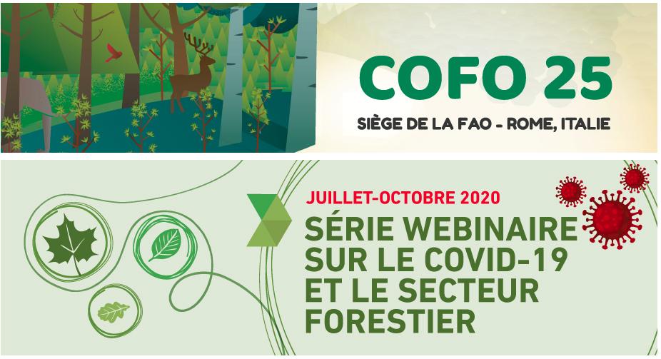 webinar forest