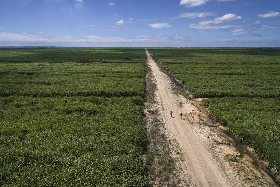 Mozambique LAND-at-scale