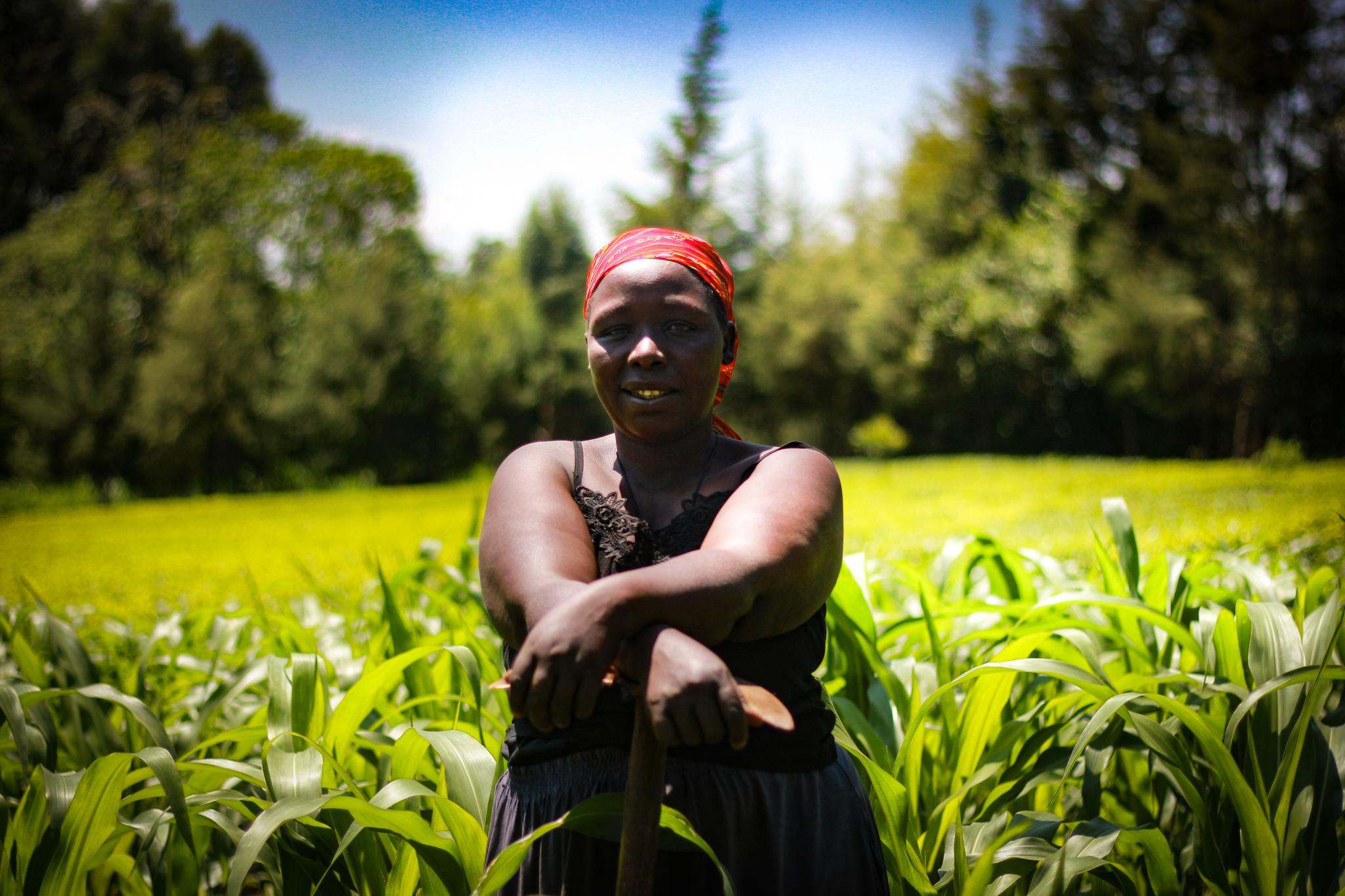 women's land tenure security
