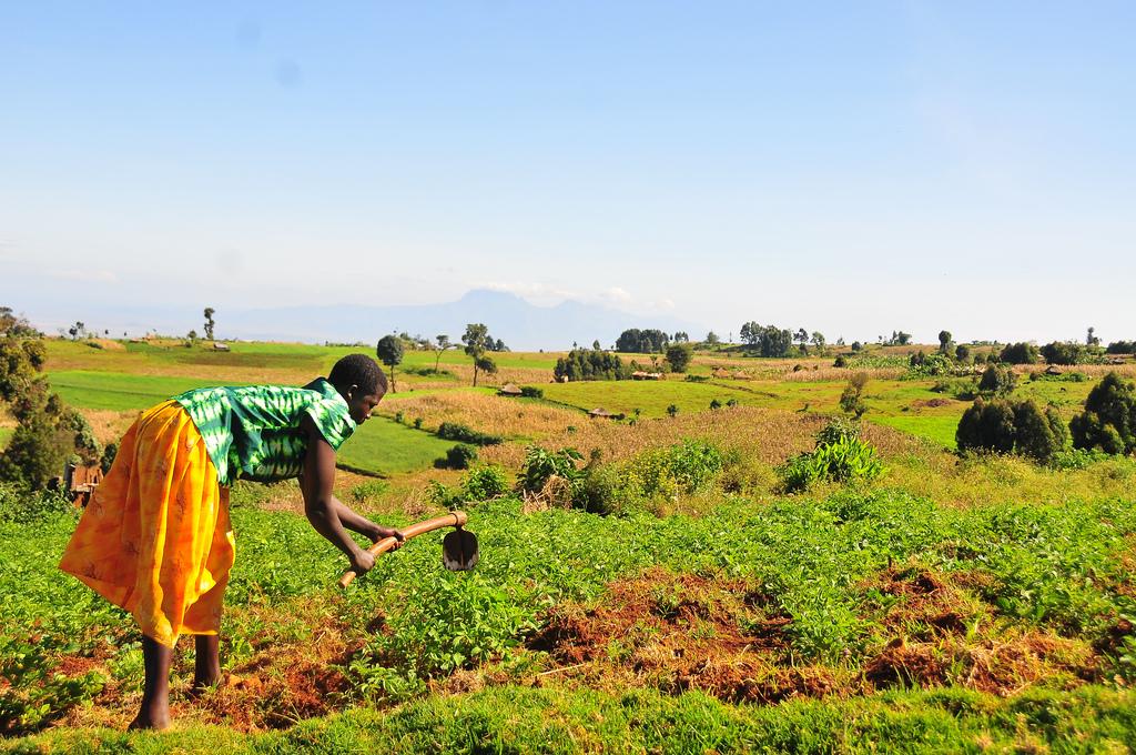 Uganda land environment Mountain Partnership