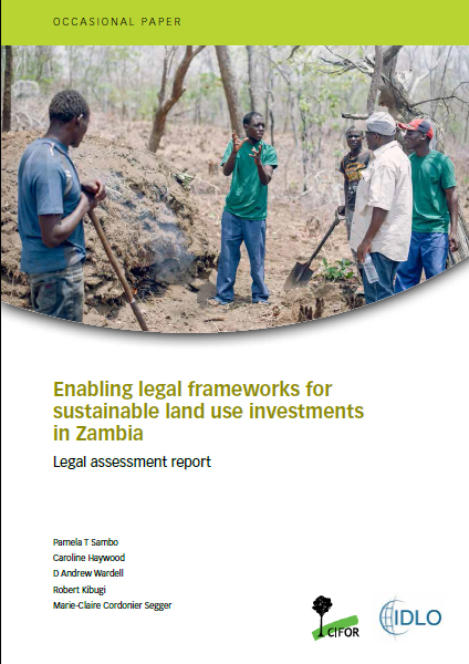 land use and control in zambia An overview: land use and economic development in statewide transportation planning 55 chapter 6 land use controls control of land use is a controversial subject in many locations.