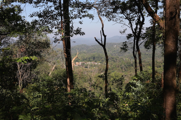 Figure 3: A Gheba village located within a forest in Kayin State (by Christian Erni)
