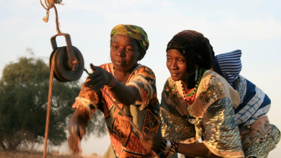 Webinar: Land, Investment and Migration