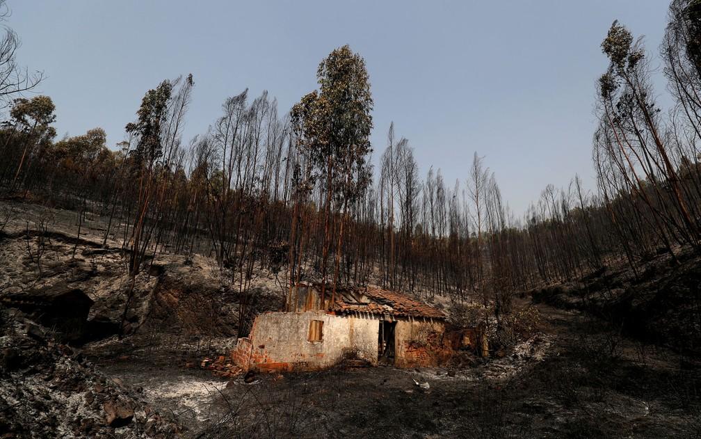 Foto: Reuters/Rafael Marchante