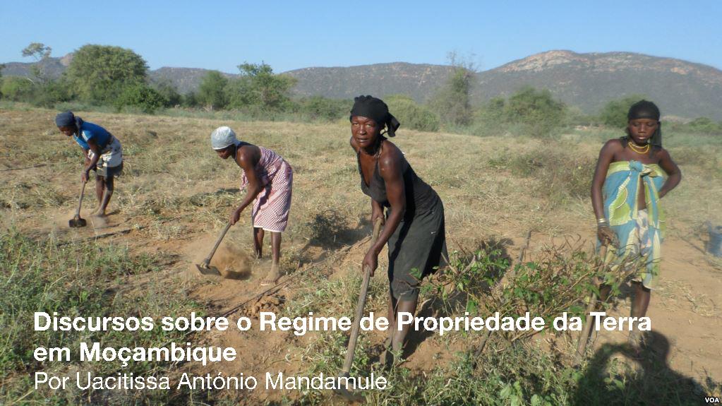 Fonte da Fonto: Farmlandgrab.org