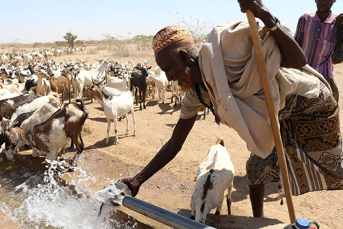 Ethiopia worst El Niño induced drought in 50 years, photo by EU/ECHO/Anouk Delafortrie, CC BY-NC 2.0 license