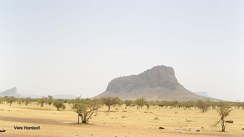 image d'illustration – Spéculation foncière : le Mali sur une poudrière ?