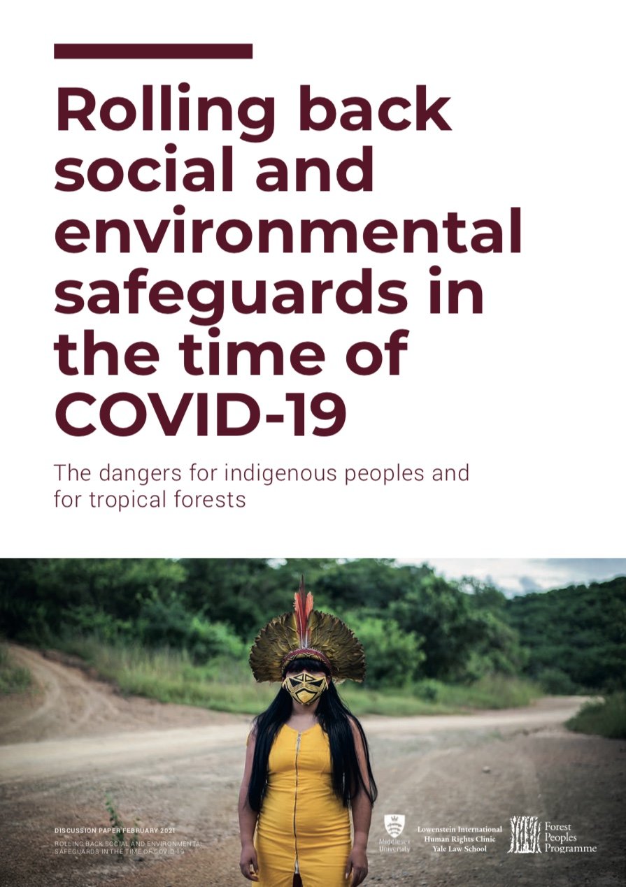 Rolling back social and environmental safeguards: Global Report