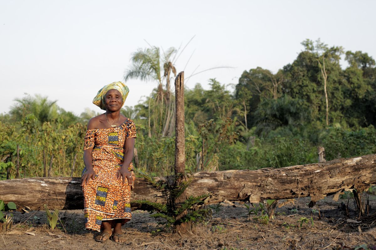 Liberia's Land Rights Law and the Worsening Dynamics of Land Grabs