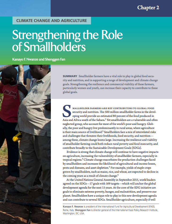 Climate change and agriculture: Strengthening the role of smallholders cover image