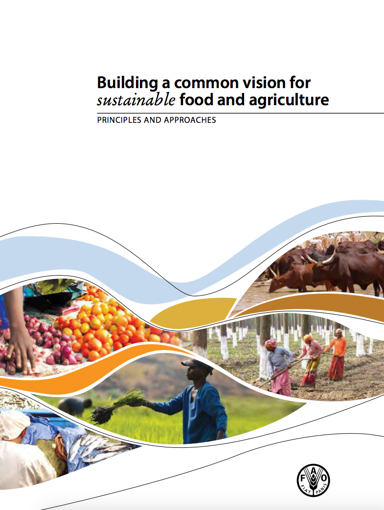 Building a common vision for sustainable food and agriculture cover image