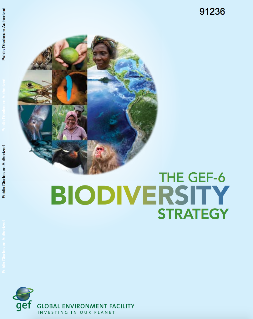The GEF-6 Biodiversity Strategy cover image