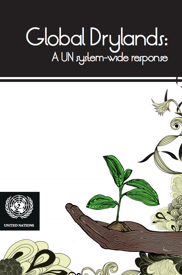 Global Drylands: A UN system-wide response cover image