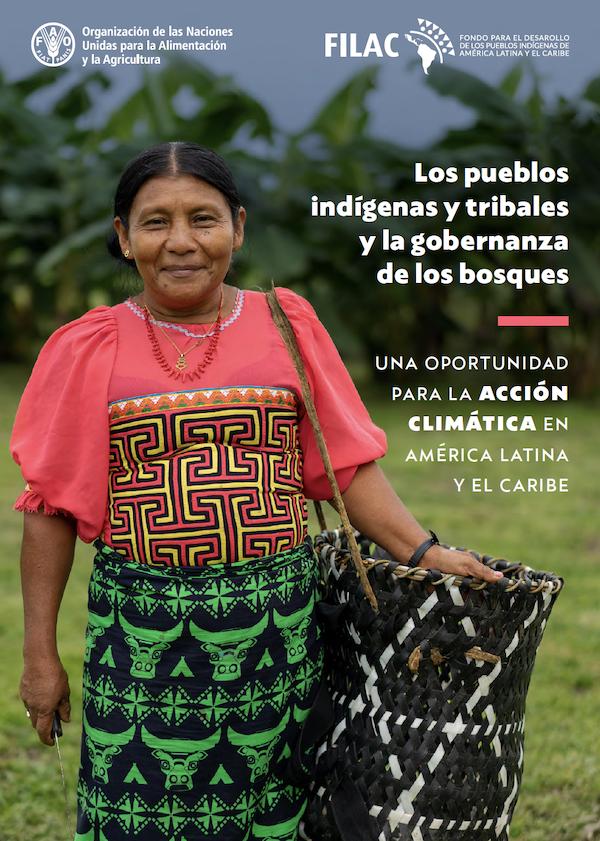 Los pueblos indígenas y tribales y la gobernanza de los bosques
