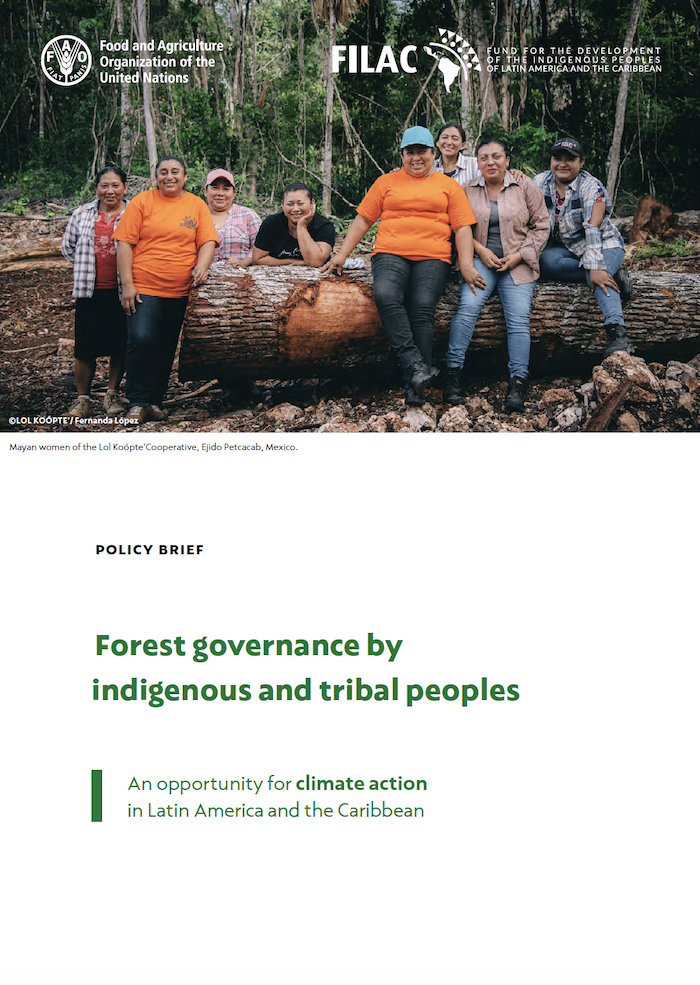 Policy Brief: Forest governance by indigenous and tribal peoples