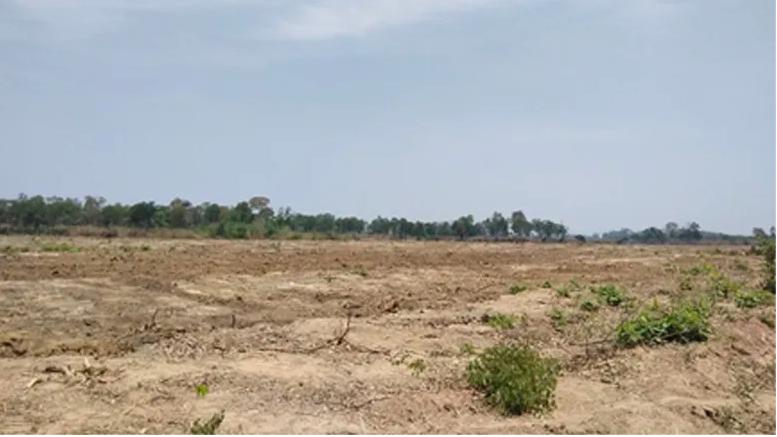 Image showing cleared land in Ratanakiri province. Photo: Inclusive Development International