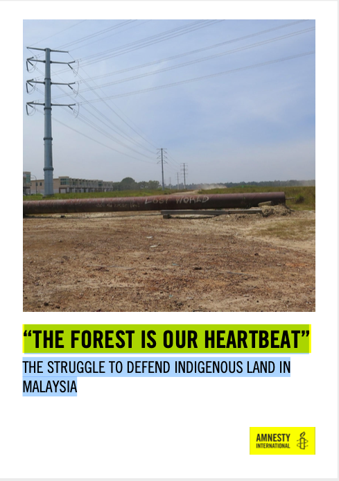 """""""THE FOREST IS OUR HEARTBEAT"""": THE STRUGGLE TO SAVE INDIGENOUS LAND IN MALAYSIA"""