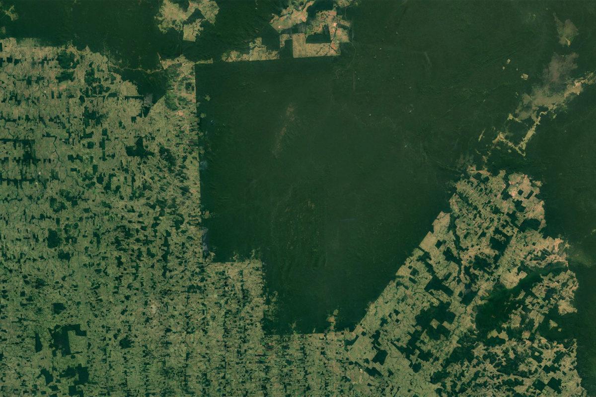 erritorios indígenas, como el territorio Surui-Paiter en Rondônia y Acre, se ven claramente en las imágenes satelitales de parte del Amazonas debido al fuerte contraste con las áreas deforestadas que los rodean. Foto: NASA.