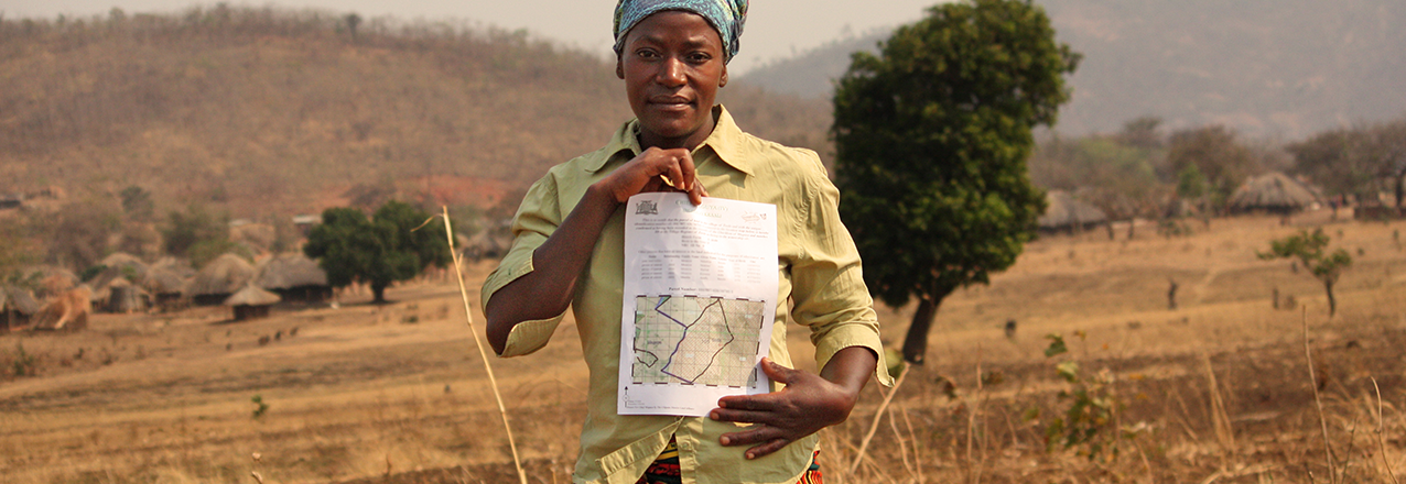 Land Tenure and Property Rights