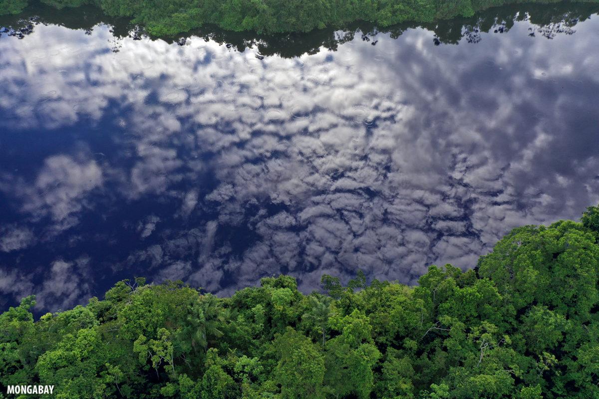 Nubes reflejadas en una laguna de aguas negras en la Amazonía peruana.
