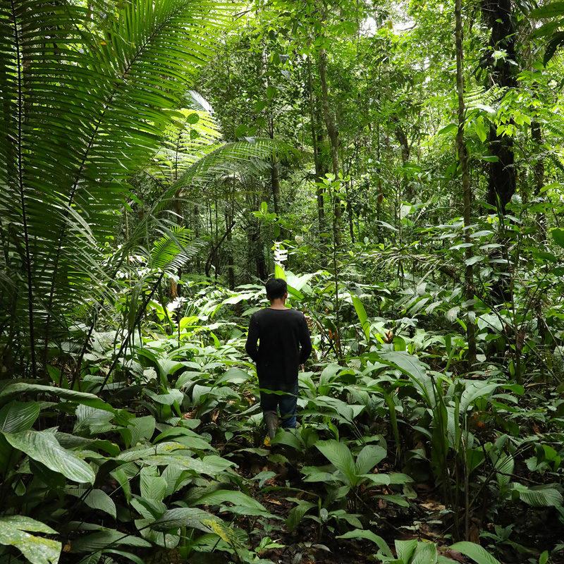 Hombre de la comunidad indígena Tikuna, en la selva amazónica.