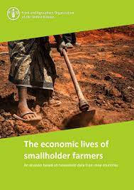economic smallholders - FAO