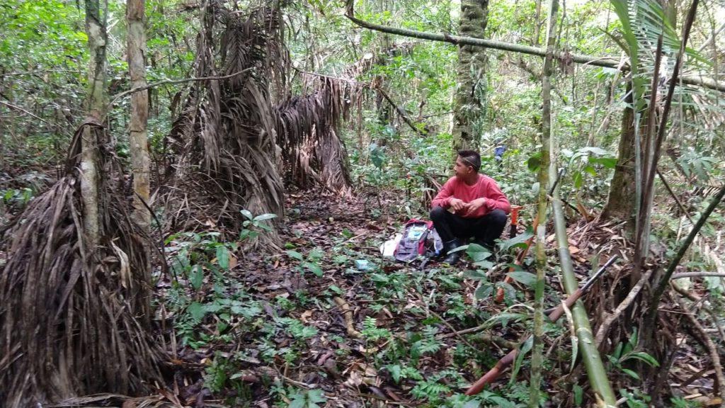 Foto: Equipe Manxineru de monitoramento/Jan2020