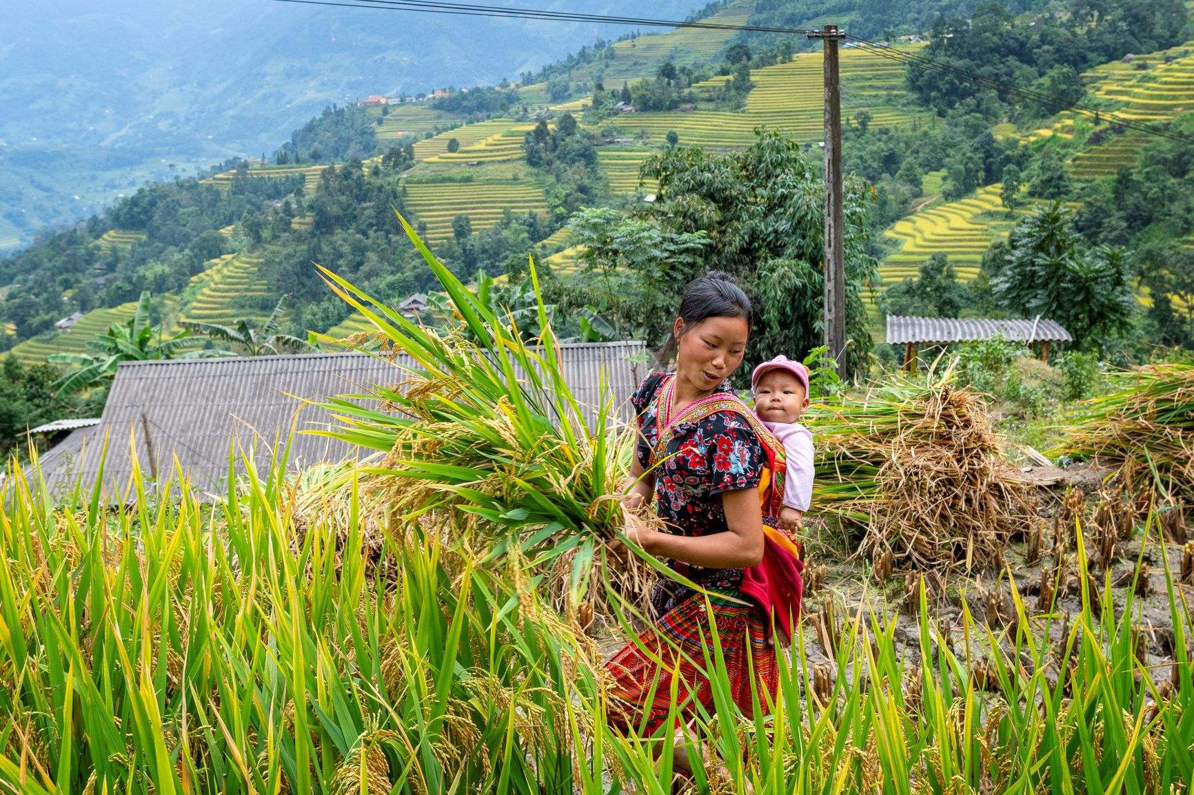 Landscapes, nature and local life during a field visit PLUP and VFMP to Yai Village, Phoukoud District, Xiengkhouang Province. © Bart Verweij – MRLG