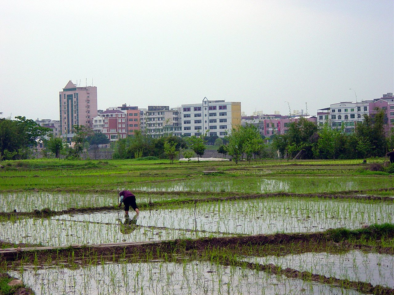 Bridging the Gap on Land Governance and Tenure along the Urban-Rural Continuum