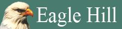 Eagle Hill Institute logo