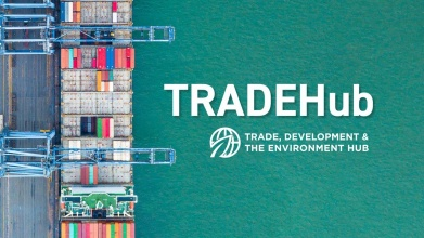Trade, Development and the Environment Hub