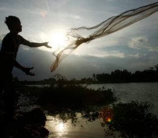 Flood Risk for 1 Million in Phnom Penh as Wetlands Destroyed