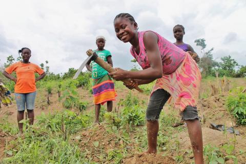 Liberia agriculture USAID photo