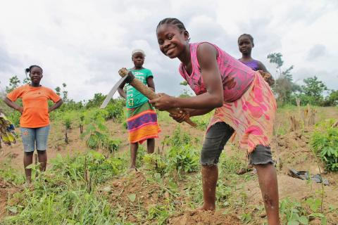 Liberia agriculture USAID photo