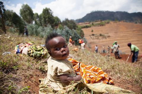 Rwanda agriculture land governance