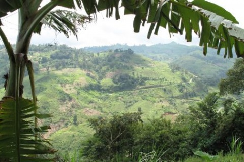 Legal activism key to securing land rights during new investment phase