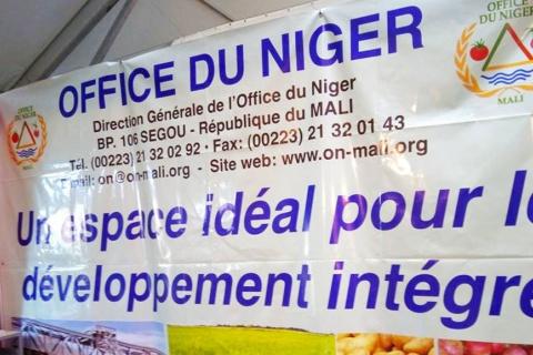 original_office-du-niger-segou-agriculture.jpg